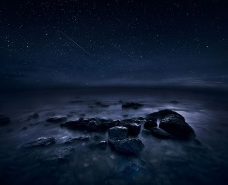 MIKKO LAGERSTED